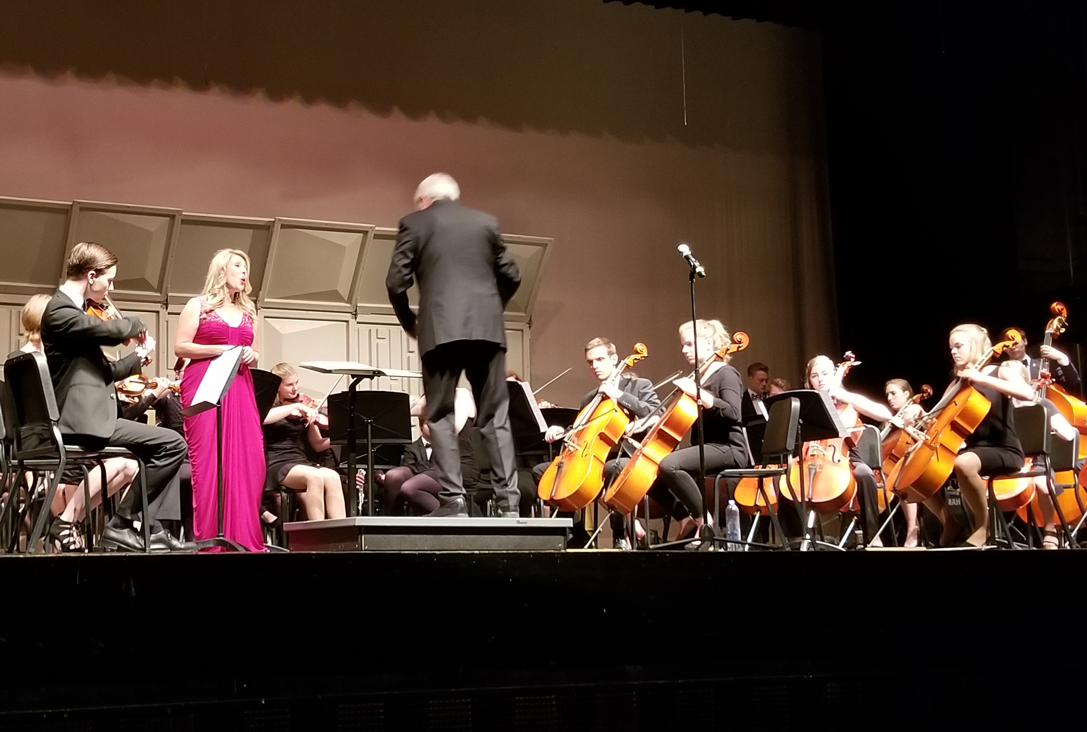 Ahrensburg Youth Symphony Orchestra